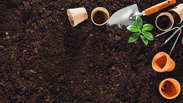 Kompost Erde und Blumenerde kaufen und liefern lassen in Berlin